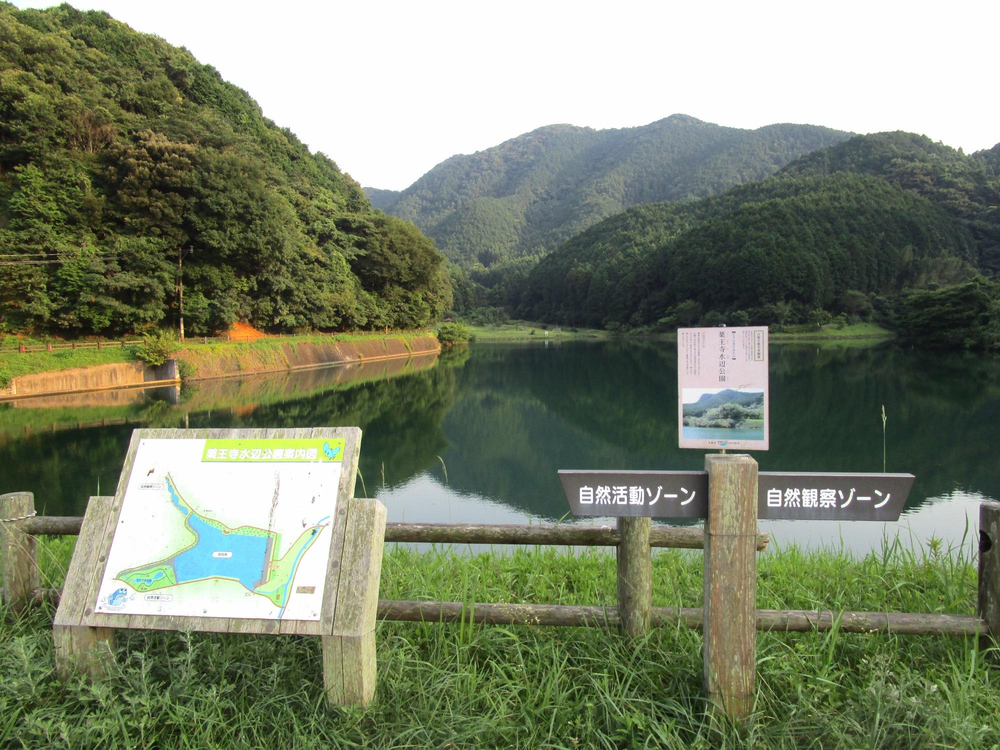 薬王寺水辺の公園