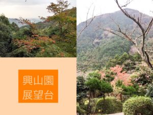 興山園の紅葉風景。古賀市