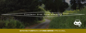 福岡県産(国産)シナモンの木