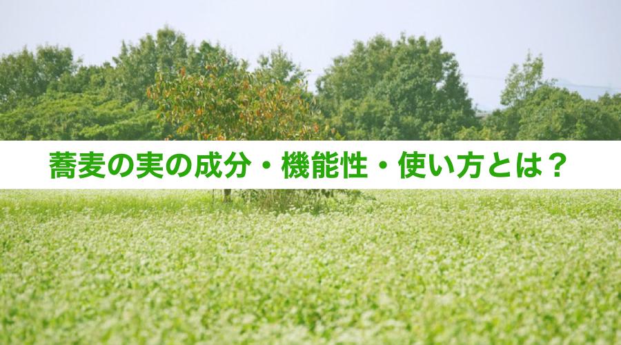 蕎麦の実の成分・機能性・使い方