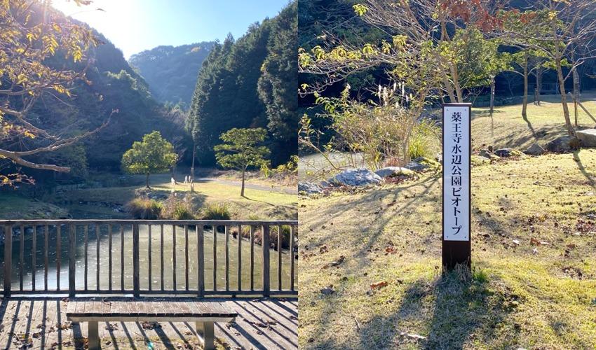 薬王寺水辺公園ビオトープ