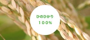 玄米コーヒーの品種