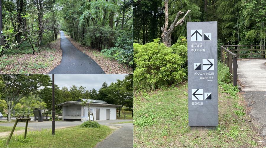 遊びの丘、古賀市グリーンパーク