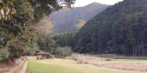 薬王寺水辺公園キャンプ場