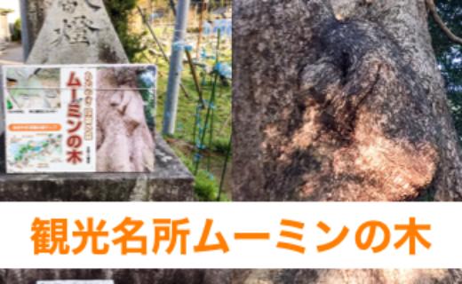 古賀市の観光名所ムーミンの木