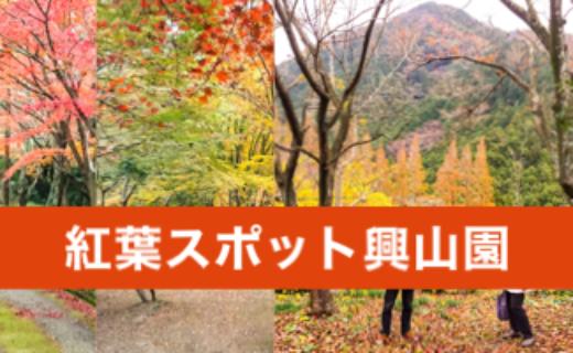 興山園の紅葉は古賀市の観光スポット