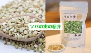 蕎麦の実の紹介