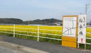 筵内なの花畑無料駐車場